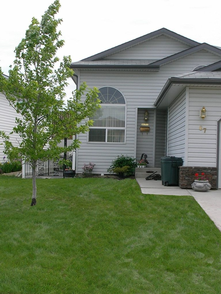 Typical front yard BEFORE curb