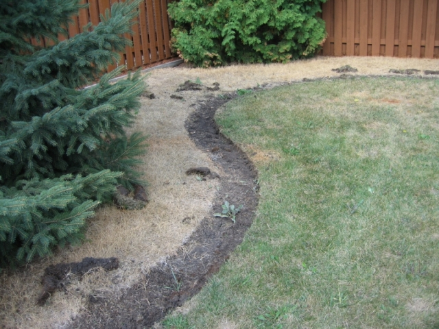 Kill and cover- lawn behind will be covered with fabric and rock. no need to peel it all up!